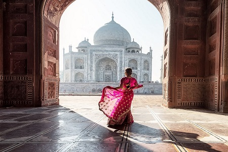 Rajasthan Delight with Tigers and Taj